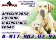 Частная служба дрессировки собак «Богард»