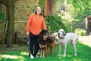 Дрессировка собак и консультации зоопсихолога