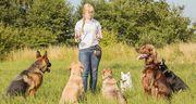 Воспитание собак в Набережных Челнах
